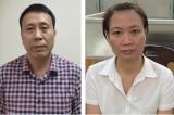Nâng khống giá cây xanh, Giám đốc Ban Duy tu thuộc Sở Xây dựng Hà Nội bị bắt