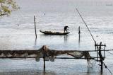 Mỹ tài trợ 2,9 triệu USD, khởi động dự án Bảo tồn môi trường sống ven biển ĐBSCL