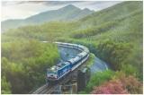 Tổng công ty Đường sắt Việt Nam muốn nhập '37 toa xe 40 tuổi' đã thải loại của Nhật Bản